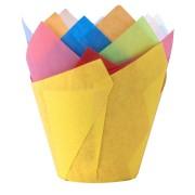 Muffin-Tulip-Wraps, farbig sortiert, 160x160 mm, 24 Stk.
